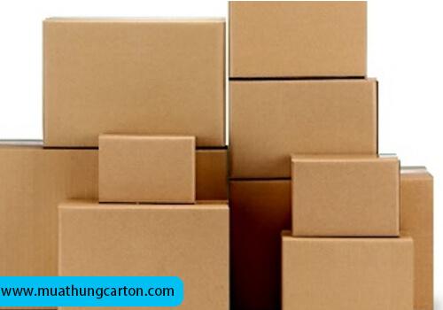 thùng carton gò vấp -4