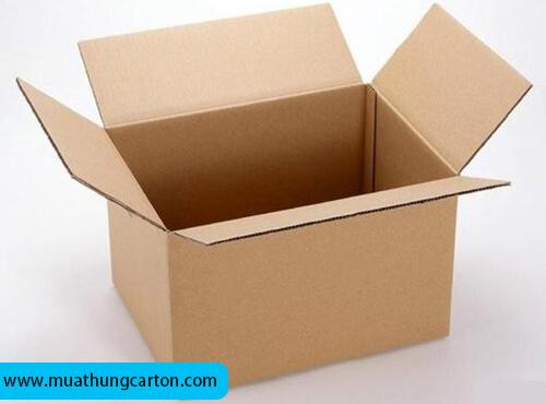 thùng carton gò vấp -5